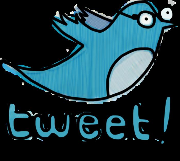 tweet-dork-bird-800x716